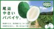 onomichi_top2-700x385